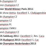Dosažené tituly